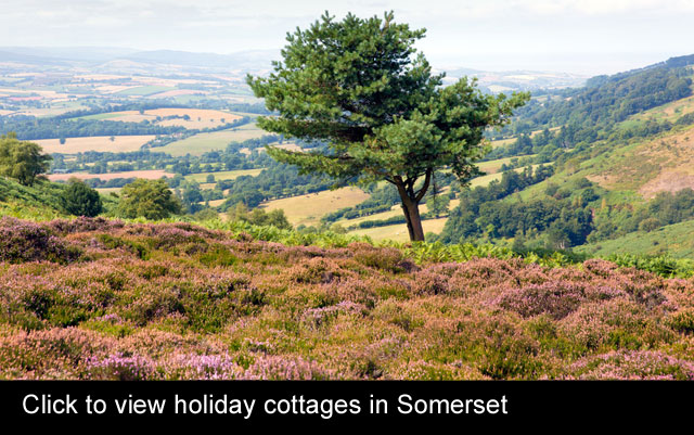 holiday cottages in Somerset
